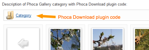 Content Plugin rendered in Phoca Gallery